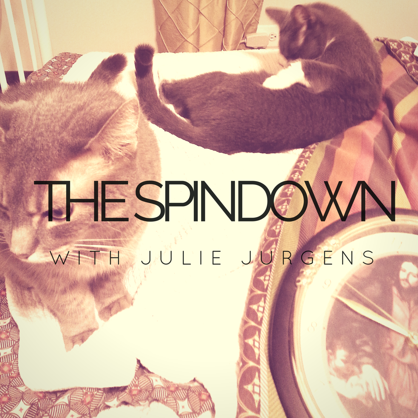 The Spindown